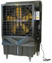 Охладитель воздуха Master BC 220 в Новосибирске